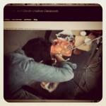 Fahéjas rebarbara-alma kenyér és egy étel fotós workshop