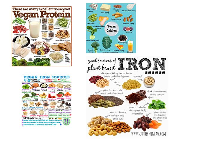 Vegán (növényi alapú) fehérje, kálcium és vas források