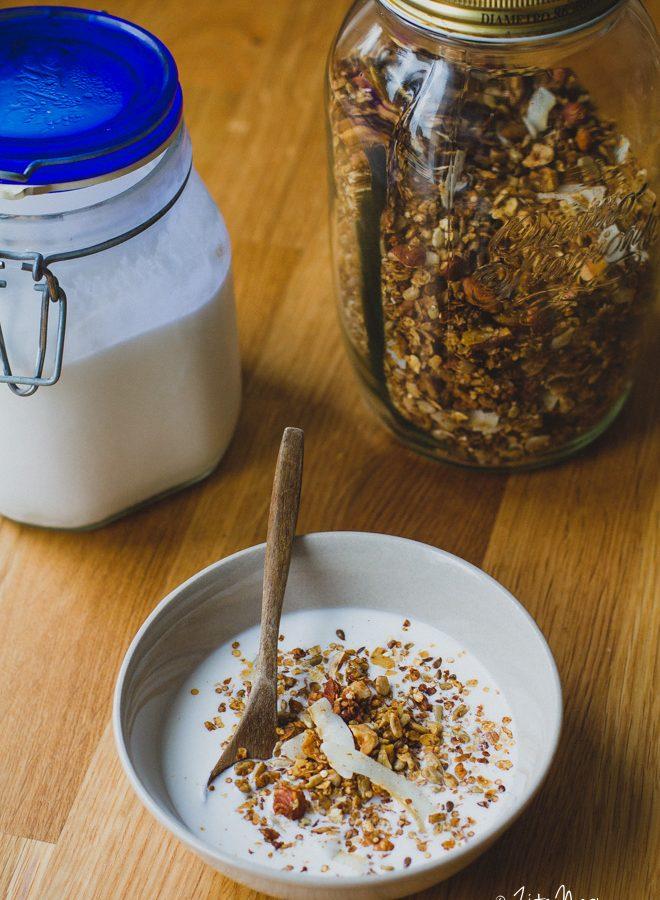 Kókuszjoghurt (laktózmentes, gluténmentes, vegán) + Smartchef szakács robot készülék