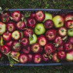 Almás cobbler (laktózmentes, vegán)